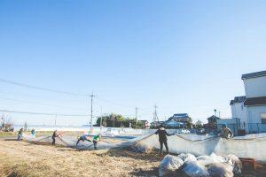 渋谷農園 ハウス解体4