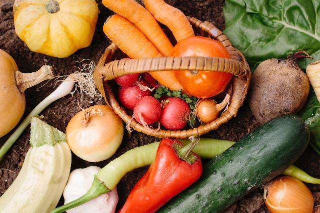 有機農業が昔から取り入れている「提携」が素晴らしいと思います。【無肥料自然栽培農家 明石農園 研修14日目(2016年2月25日)】