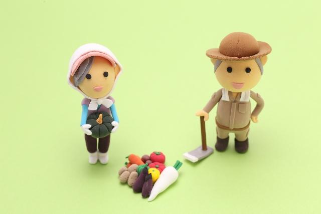 一般の方が抱く農家の印象と実際に農家がやっていることは違う?【無肥料自然栽培農家 明石農園 研修39日目(2016年4月5日)】