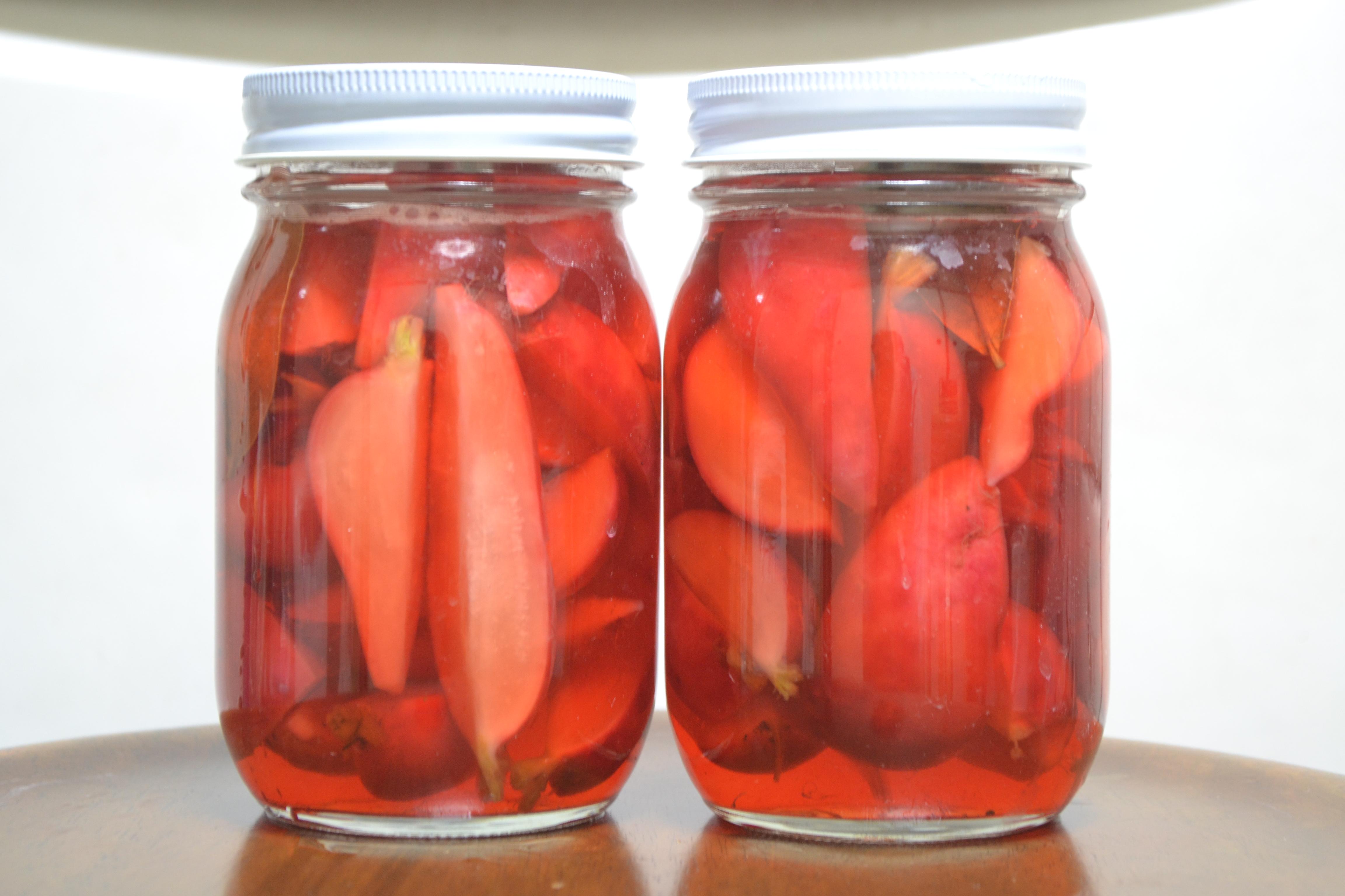 野菜が収穫できるようになってくると料理したくなります。【無肥料自然栽培農家 明石農園 研修52日目(2016年5月4日)】