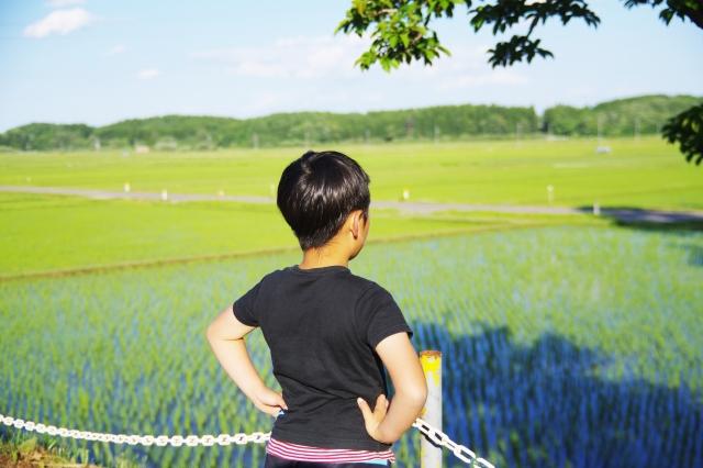 は?なにが慣行農法だー!!!【無肥料自然栽培農家 明石農園 研修64日目(2016年5月23日)】