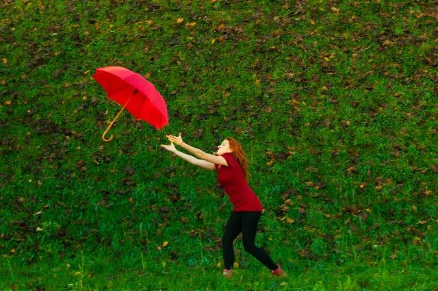 農家マインド 執着心をなくすことのススメ【無肥料自然栽培農家 明石農園 研修94日目(2016年7月18日)】