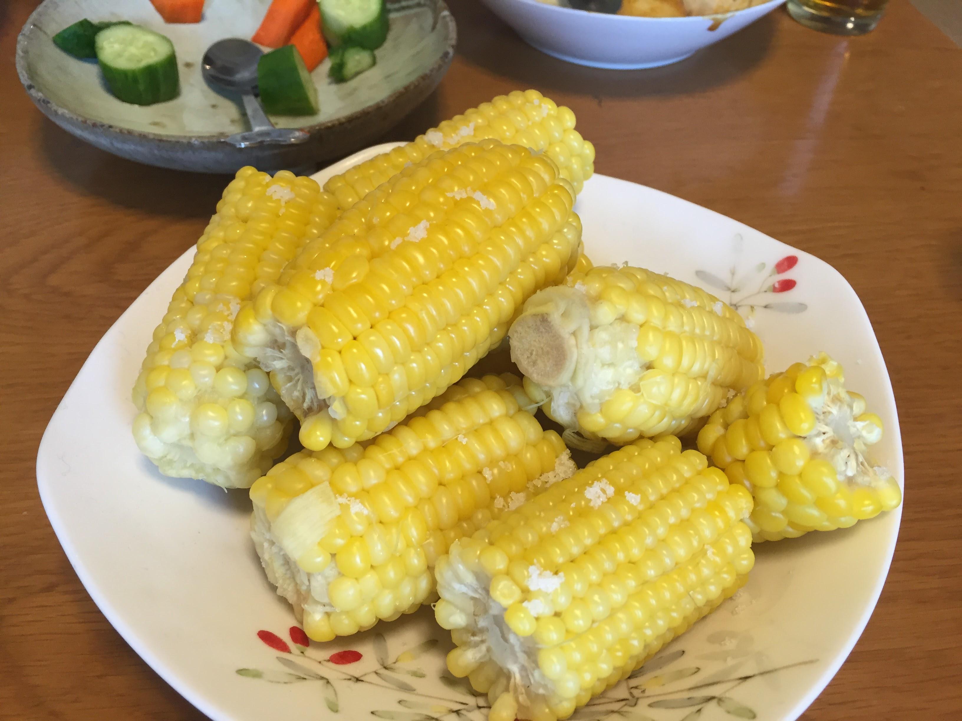 自然栽培とうもろこしを食べるために井垣農園へ行ったよ!
