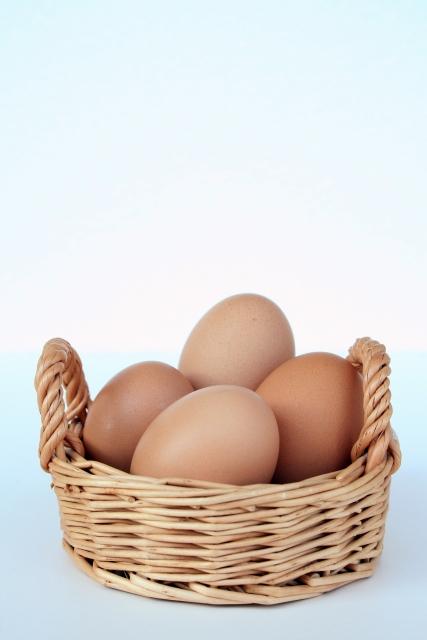 卵は一つのカゴに盛るな!野菜も一つのカゴに盛るな!【無肥料自然栽培農家 明石農園 研修111日目(2016年8月25日)】
