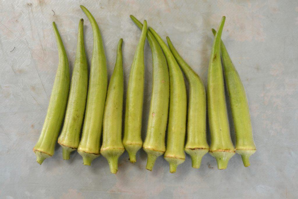 自然栽培 オクラ ののの農園 無農薬 無肥料