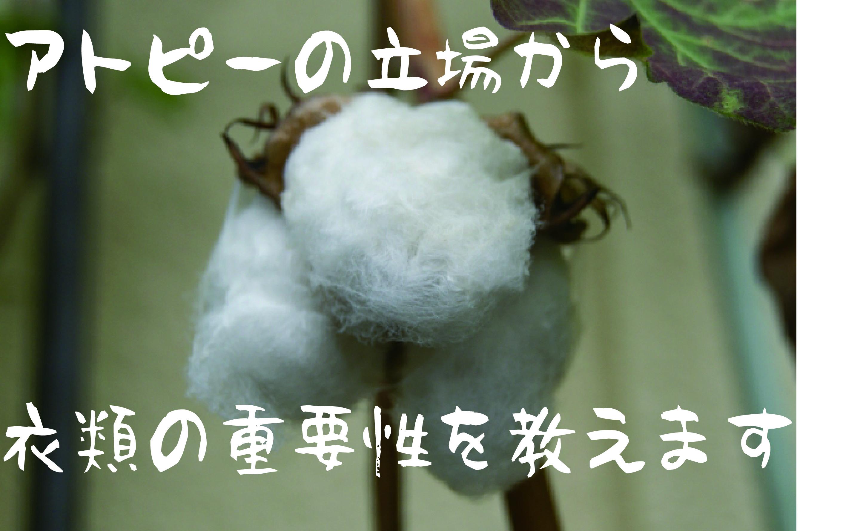 アトピーの立場から衣類の重要性を教えます!【無肥料自然栽培農家 明石農園 研修136日目(2016年10月14日)】