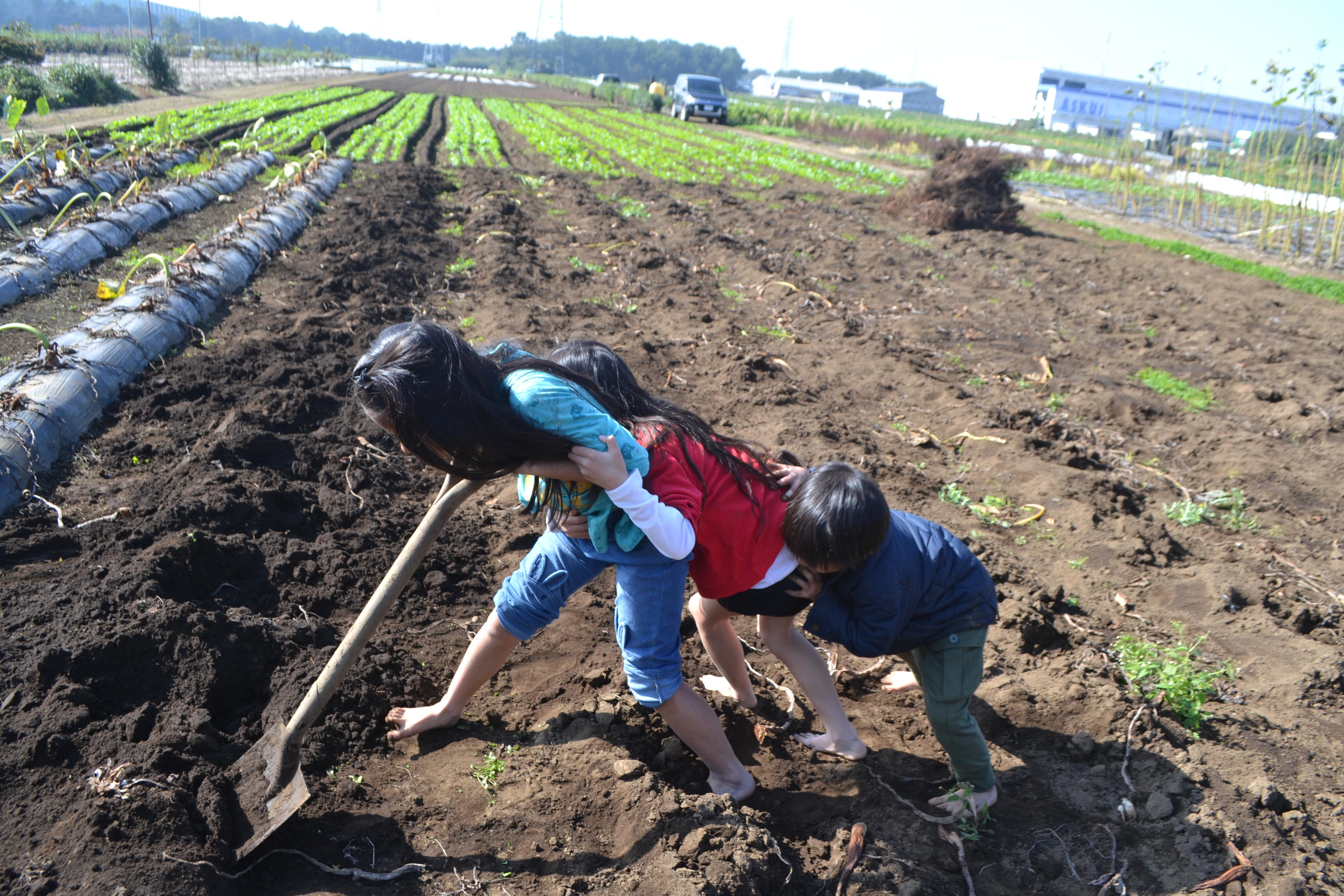 健康にいいは自己満足でOK!【無肥料自然栽培農家 明石農園 研修146日目(2016年11月5日)】