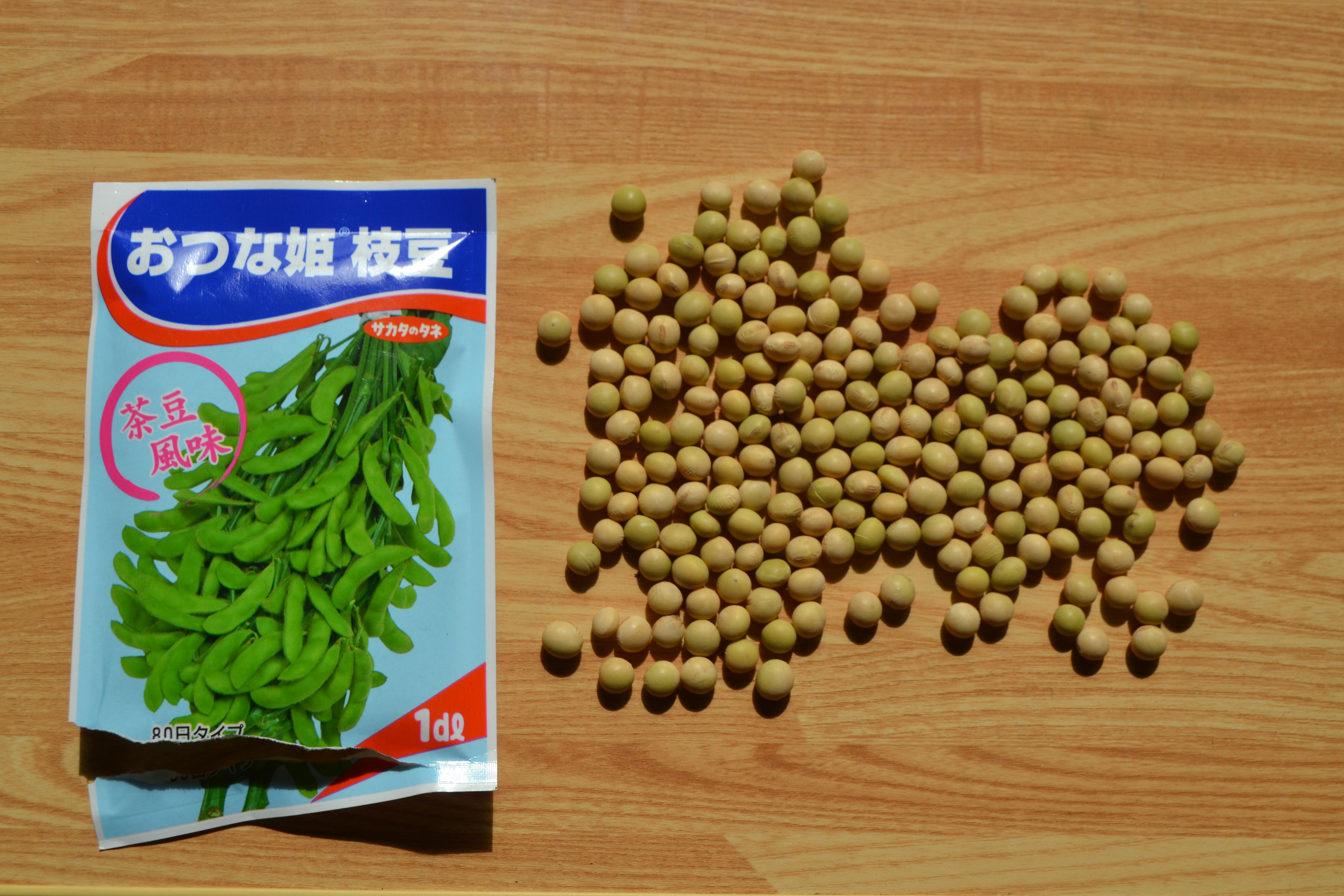 大豆1デシリットルは何粒か?