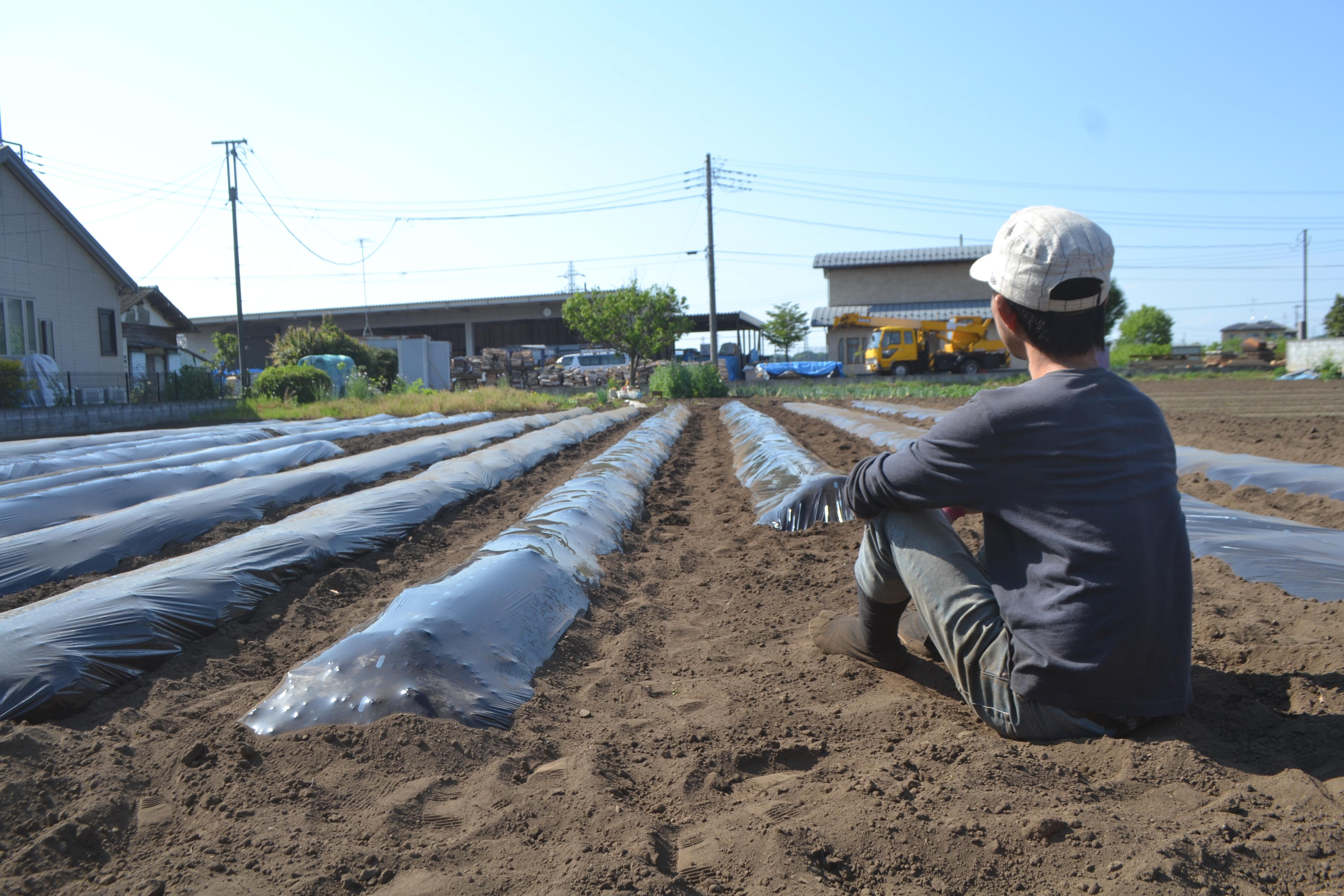 里芋植えて思ったけど、野菜は植えてからお金になるまでの間隔があるから大変だよね〜