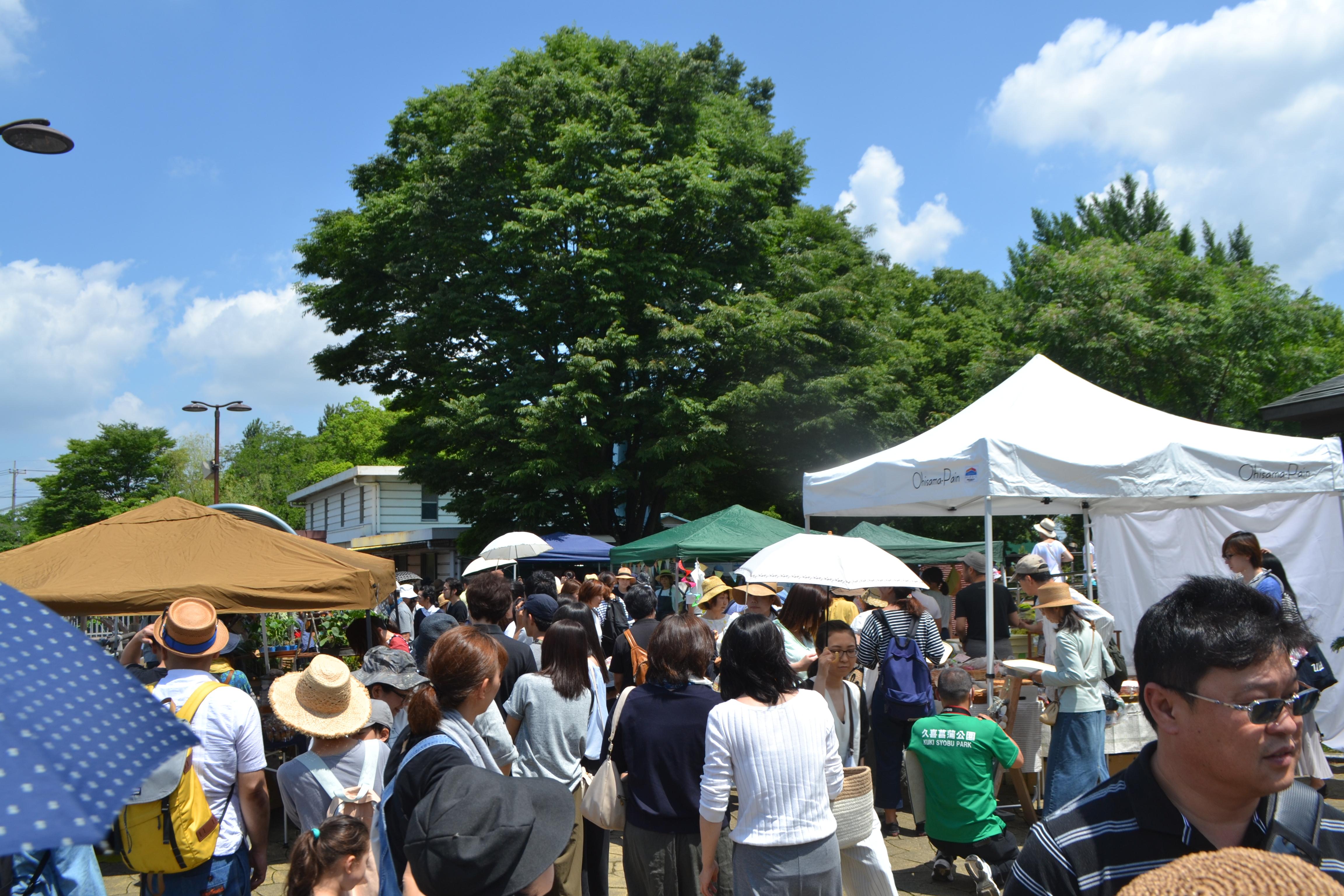 「縁側日和」というマーケットの反響を見て、巾着田でやりたいと思った!