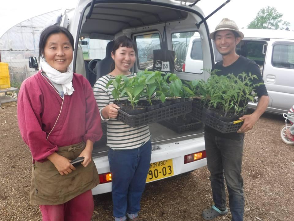 飯能の「小島農園」さんから野菜の「苗」をいただきました^^