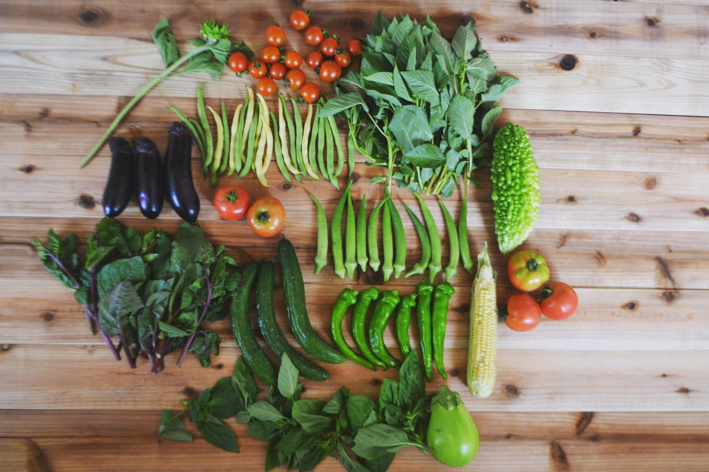 今週の野菜セットの内容
