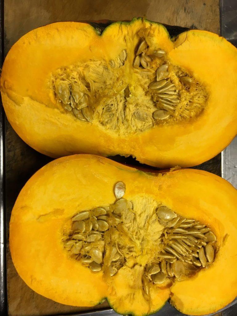 かぼちゃ 自然栽培 ののの農園 無農薬 無肥料