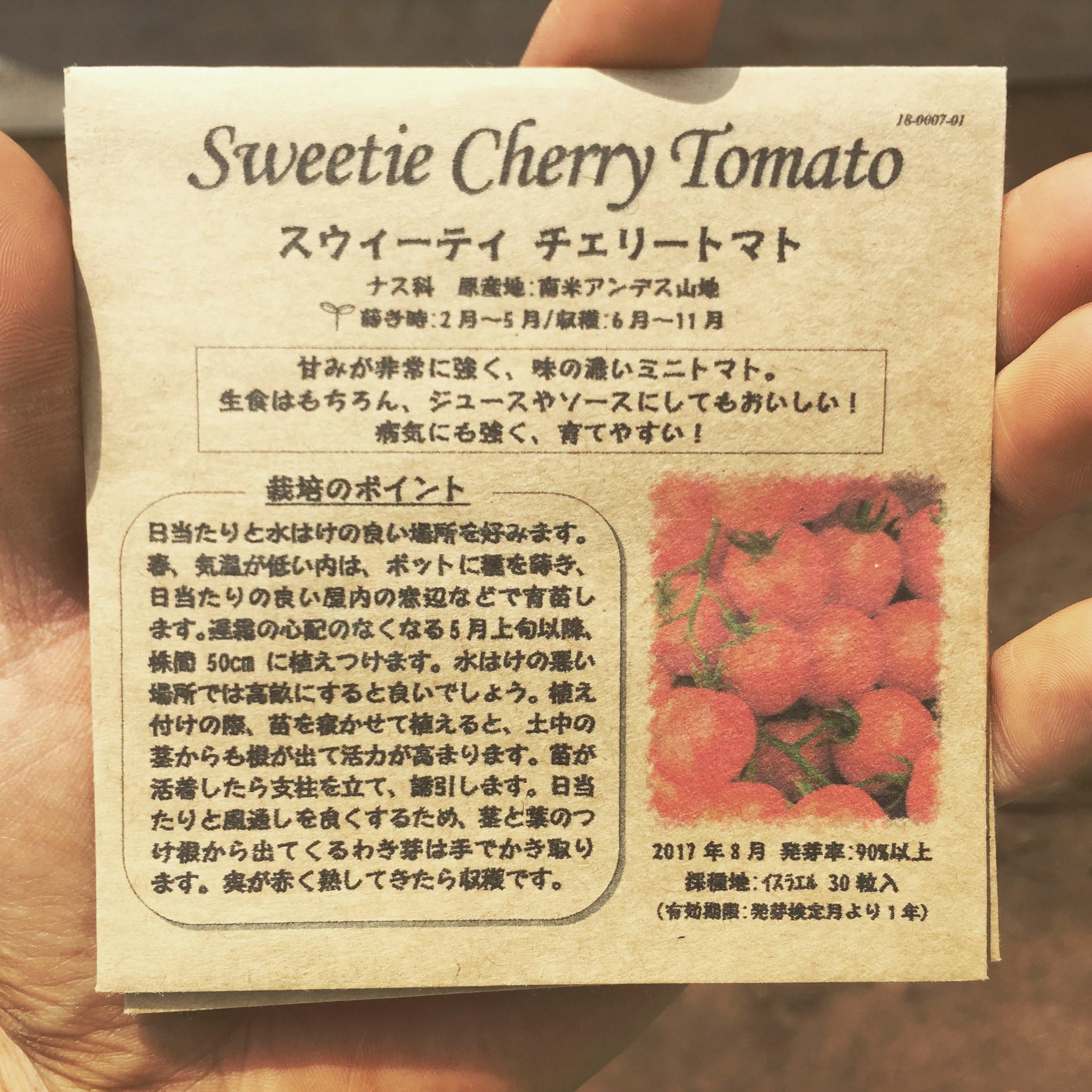 スウィーティチェリートマト播種♪ポット上げ!