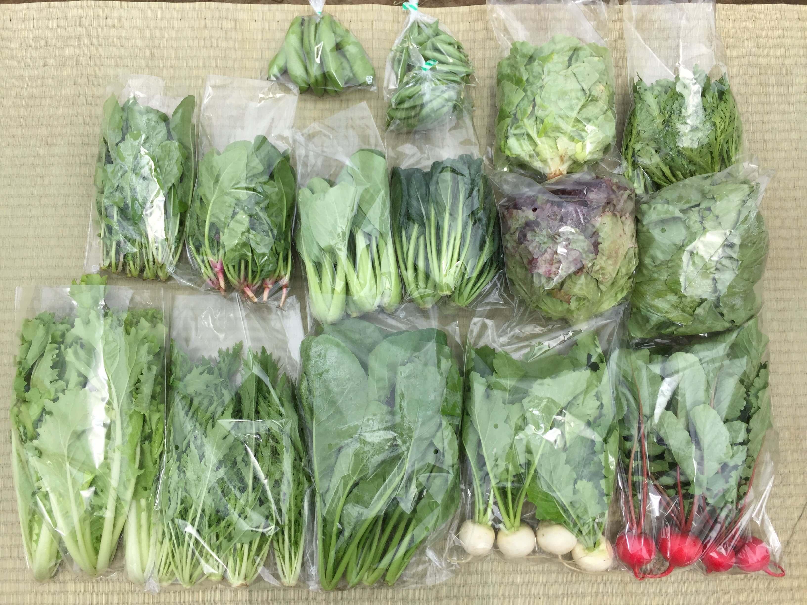 野菜セットデカ 一例