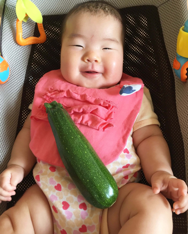 夏野菜一番乗りはズッキーニ♪
