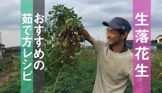 【自然栽培】旬が短い生落花生のおすすめの茹で方・レシピ