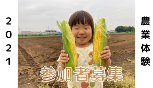 2021年3月より「ののの農園@埼玉県日高市」の農業体験はじめます!