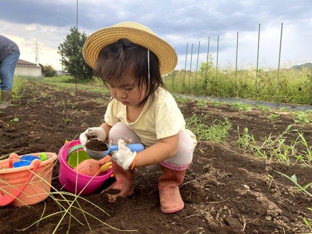 家庭菜園 子ども 畑 土いじり